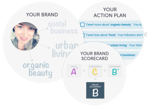 Get a free Twitter Brand Assessment   Action Plan   Twylah