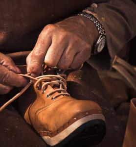 cobbler's shoe